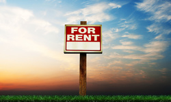 Which lease should I offer my tenant?